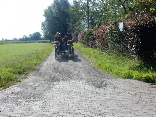 Drongen Gent (18)