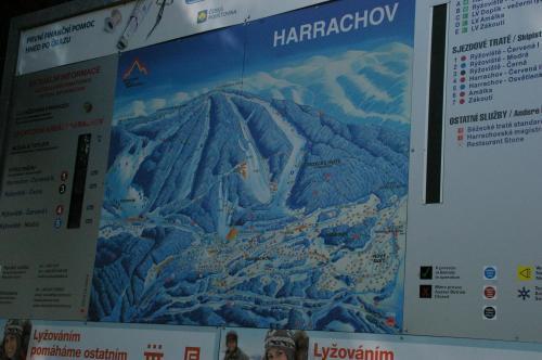 2019 Harrachov 1 (108)
