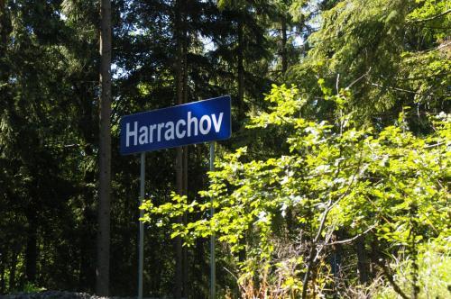 2019 Harrachov 1 (236)