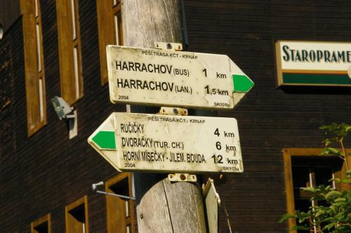 2019 Harrachov 1 (7)