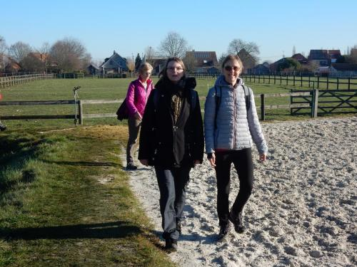 2019 Kapelle-op-den-Bos (13)