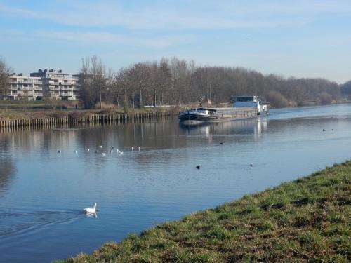 2019 Kapelle-op-den-Bos (33)