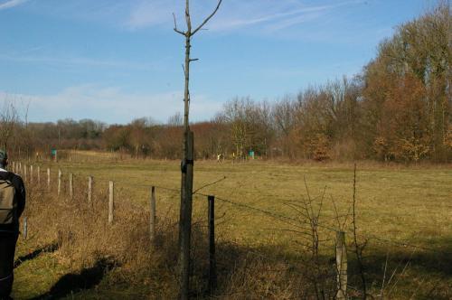 2019 Kapelle-op-den-Bos (73)