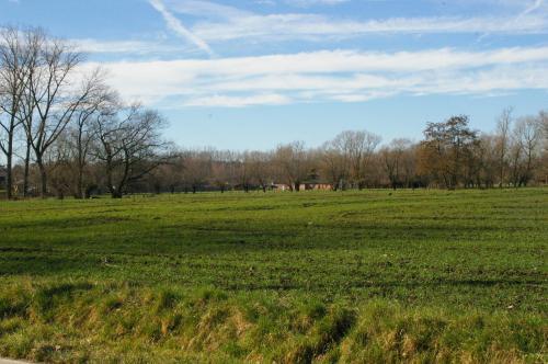 2019 Kapelle-op-den-Bos (95)