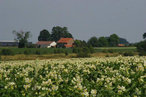 2019 Bierbeek (138)