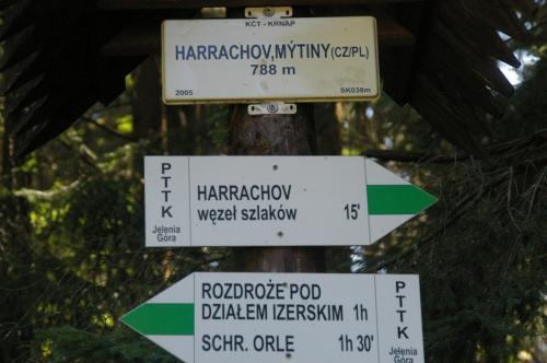 2019 Harrachov 1 (240)