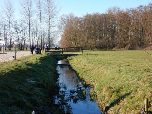 2019 Kapelle-op-den-Bos (12)