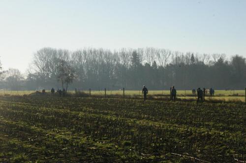 2019 Kapelle-op-den-Bos (40)