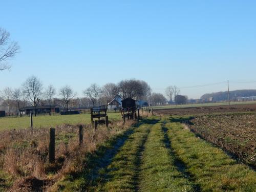 2019 Kapelle-op-den-Bos (6)