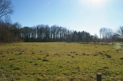 2019 Kapelle-op-den-Bos (75)